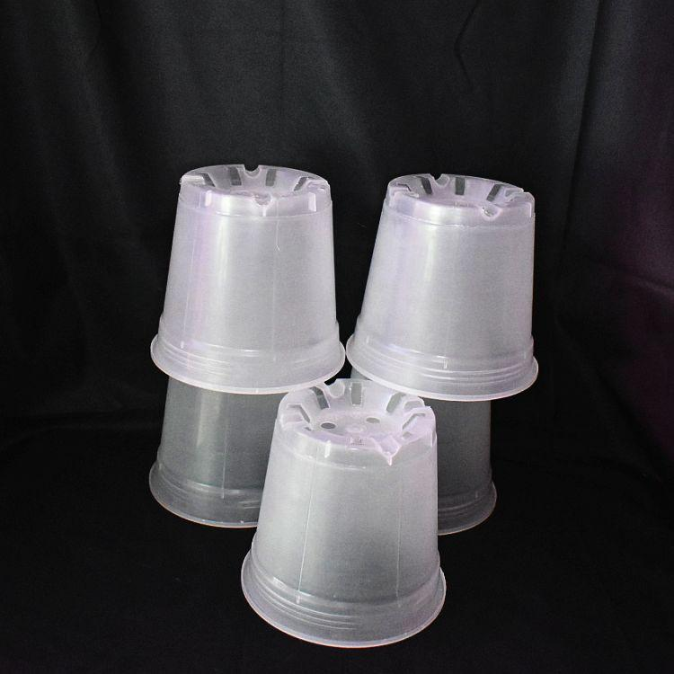 (5 Pack) 6'' Clear Round Plastic Orchid Pot  by Sophie's Orchids
